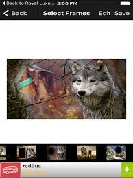 wild animal jungle photo frames hd selfies editor screenshot 5