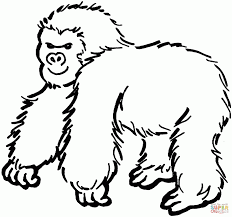 Thick Gorilla Coloring Page - Animal - Pictures Of Gorillas ...