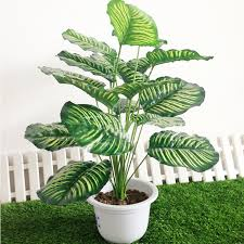 artificial plants for office decor. Artificial Plants Rohdea 18Leaves Fake Flowers Foliage Wedding Home Office Decor-in Skin Care From Beauty \u0026 Health On Aliexpress.com | Alibaba Group For Decor "|225|225|?|en|2|9b4d08561f2fdd5d7ac2009b2ae2017d|False|UNLIKELY|0.34736505150794983