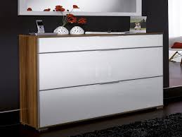 Gorgeous Inspiration Modern Shoe Cabinet Fine Design Ideas Shoe Cabinets  Storage Solution Interior
