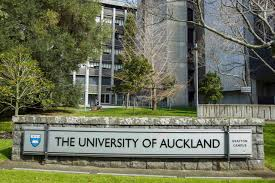 Auckland University Quotes 570 For Med School Emails Stuffconz
