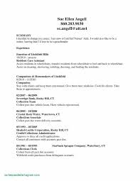 How To Write A Job Summary For A Resume Updated Cna Job Description