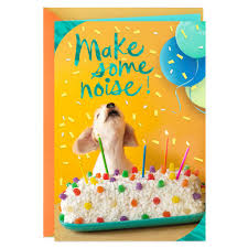 Card Bday Birthday Cards Bday Cards Hallmark