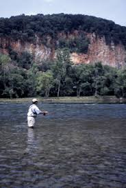 Fly Fishing In Tennessee The Holston River Below Cherokee