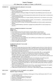 Marketing Project Manager Resume Sample Photo Gallery For Website