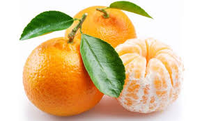 Resultado de imagen para mandarina propiedades y beneficios