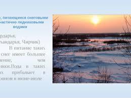 Урок на тему Реки Средней Азии  Реки питающиеся снеговыми и частично ледниковыми водами Сырдарья Сурхандар