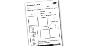 Animal Flow Chart Ks2 Variation Worksheet Flow Diagram Flow Chart Flow Chart