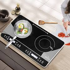portable induction cooktop reviews