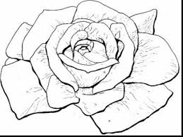 Small Picture surprising printable rose coloring pages with rose coloring page
