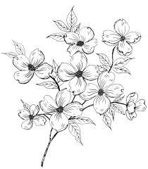 Flower Design Drawing