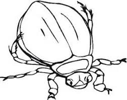 Small Picture Insect Coloring Pages 2 Coloring Pages To Print bug pictures to