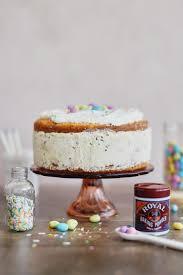 Funfetti Speckled Egg Ice Cream Cake Lucky Ponylucky Pony