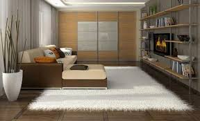 large white area rug for living room