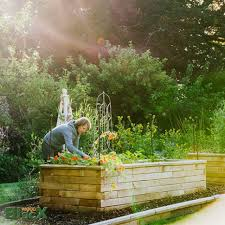 building raised garden beds soil mixture for vegetable design mix box 970x970 organic