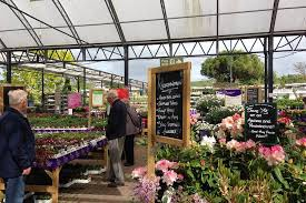alternative real estate assets such as garden centers are increasingly on the radar of global investors