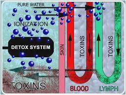 Ageless Ionic Detox Foot Bath Chart Ionic Detox Chart Detox