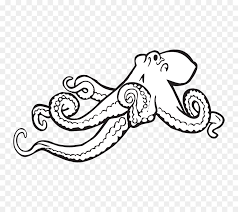 octopus black and white monochrome clip art make a coloring book