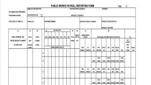 Payroll Forms Sample Payroll Reporting Forms 7 Free Documents In Word Pdf