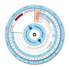 Buy Mdpocket Pregnancy Wheel Online At Low Prices In India