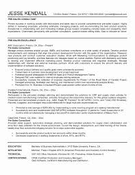 Resume Sample Technical Support Consultant Cover Letter Resume