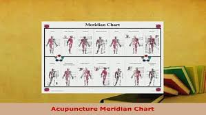 Chinese Meridian Chart Pdf Pdf Acupuncture Meridian Chart Ebook