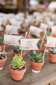 10 Fantastic New Wedding Escort Card Ideas: Succulents make for a sweet  escort card idea and double as a wedding favor your guests can take home.