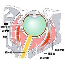 目 の 奥 が 痛い 片目