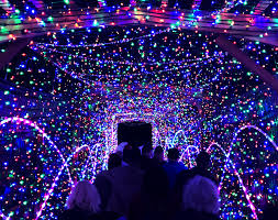 La Zoo Lights 2018 Tickets Kick Off The Holidays At The L A Zoo Lights 2017 Happy