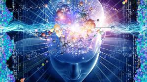 Resultado de imagen de El maravilloso cerebro humano