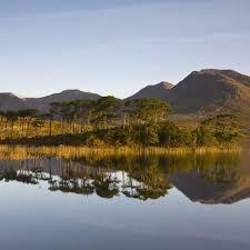 pine island connemara national park