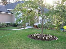 Image Of Simple Front Yard Landscaping Images Ideas Pictures