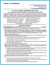 Business Development Manager Resume cool Marvelous Things to Write Best Business Development Manager 35