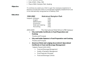 Hybrid Resume Template Adorable Hybrid Resume Template Luxury Pictures Of Hybrid Resume Template