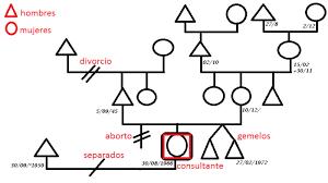 Como Hacer Un Arbol Genealogico Para Su Estudio