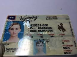 Id Ids 110 Buy Ids Wyoming Cheap wy fake Sale Fake For 00 RxTP1
