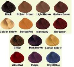 Dreamron Hair Color Chart Henna Hair Color Natural Herbal Henna Indigo Buy Henna Hair Colors Product On Alibaba Com