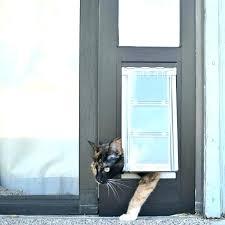 petsafe sliding glass pet door dog door sliding glass doggy door sliding glass dog insert