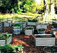corrugated metal raised beds corrugated metal raised garden beds galvanized metal raised garden beds corrugated metal raised garden beds perth