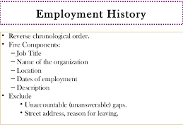 resume writting - Resume Employment History Examples