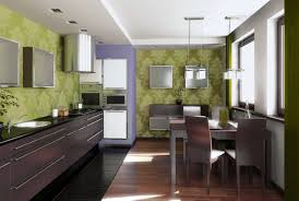 Dark Mahogany Kitchen Cabinets Best Green Wall Background Of Modern Small Kitchen Design