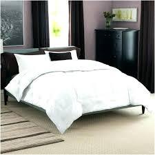 wamsutta dream zone dream zone comforter post dream zone comforter reviews dream zone wamsutta dream
