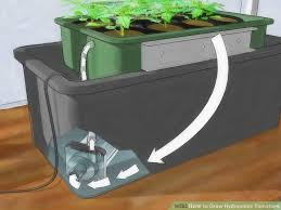 image titled grow hydroponic tomatoes step 1