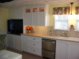 Kitchen Wainscoting Chic Pleasing Wainscoting Kitchen Cabinets Top Inspiration To
