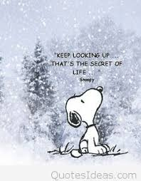 Image result for snoopy winter images