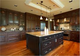 For Remodeling Kitchen Elegant Cabinets For Remodeling Kitchen Ideas Best Home