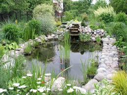 Pond How To Build A Pond A Beginners Guide To Building The Perfect
