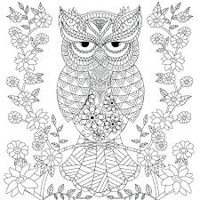 Free Owl Coloring Pages Printable Sheets For Kids Adults Goemirates