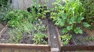 square foot garden planner