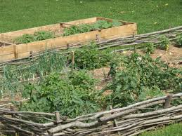 raised gardens you can make in an